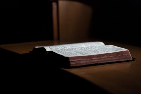 accept-authority-catholic-church