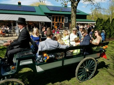 carriage-ride-big-catholic-family
